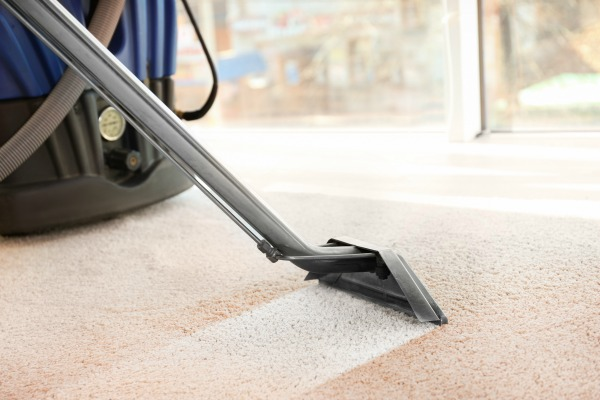 5 Reasons Why You Should Seek Professional Carpet Cleaning